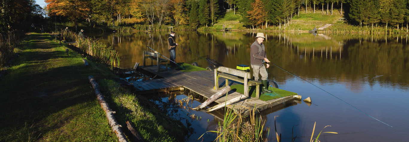 trout fishing, fly fishing, dundee, scotland, Fly Fishing Bait